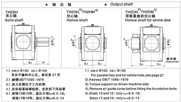 Type: TH2.H、TH2.M parallel shaft reducer